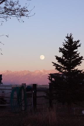 Moonrise over Blanca from our yard