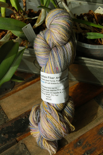 Cat Mountain Fiber Arts Aster colorway